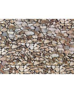 Faller Muurplaat, Natuursteen, monzonie 170610