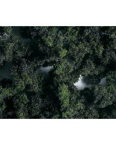 Faller PREMIUM Landschapsvlokken, middel, gemengd bos, 290 ml 171509