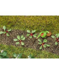Faller 28 Rabarberplanten 181273